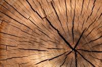 `La filière construction impactée par la hausse des prix et la pénurie de certains matériaux.